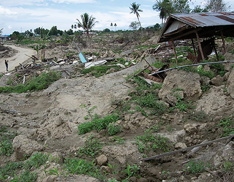 Appeal Updates – Vanuatu and Indonesia