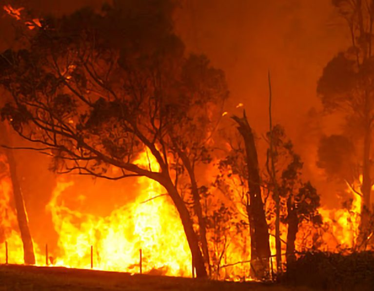 Anglicans unite to help Australian bushfire victims